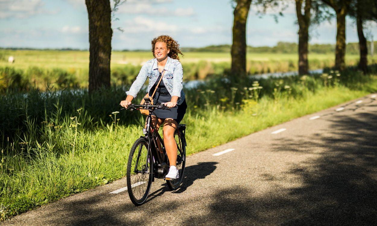 fietsroute batavus