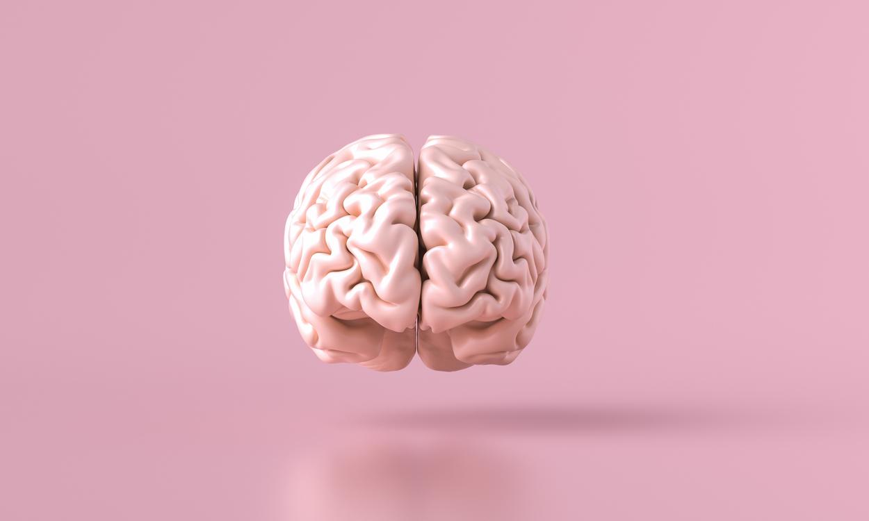 drie breinen