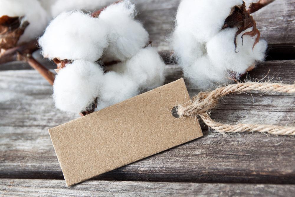 shutterstock 149540069 2 Maaike van Miss Green vertelt: concrete tips hoe jij je garderobe Eco & Fair maakt in het nieuwe jaar