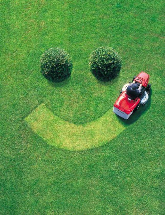 10 geur van versgemaaid gras - #geluksmoment