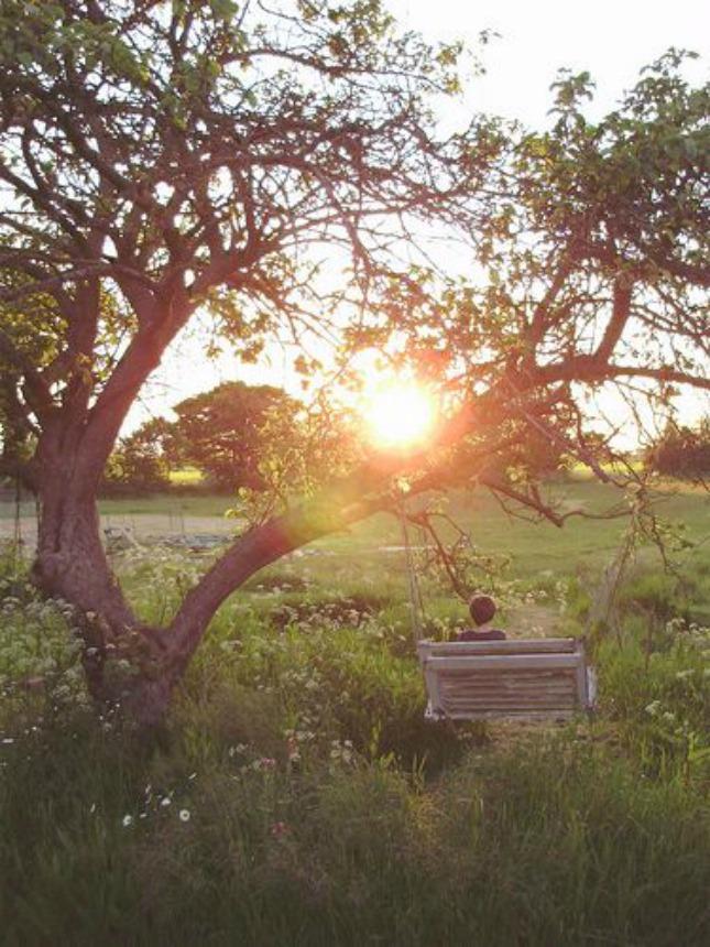6 weer licht buiten - #geluksmoment