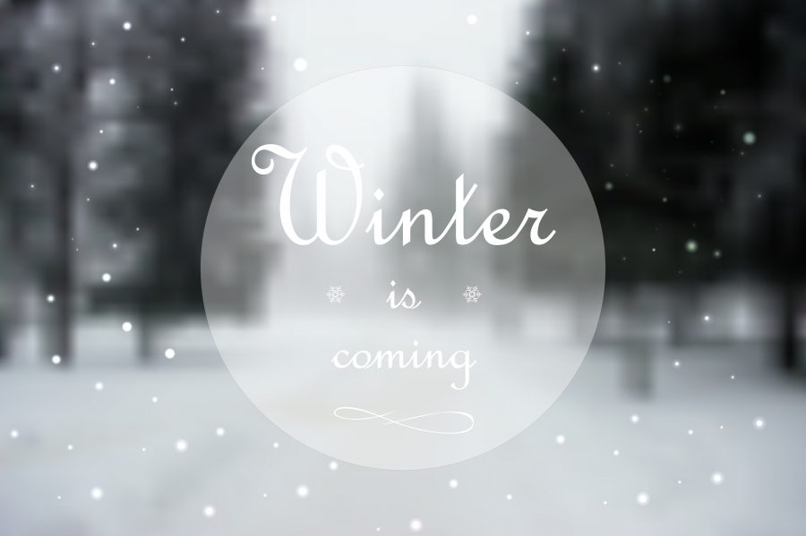 winterjas