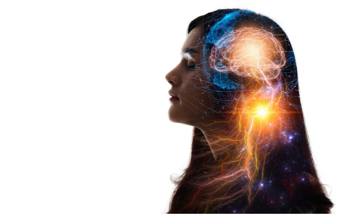 hoogsensitieve brein