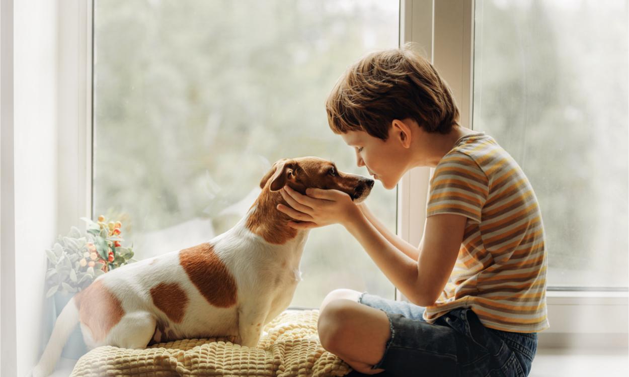 therapeutische werking huisdieren
